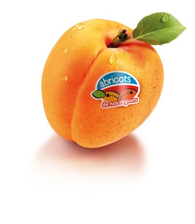 Les abricots de nos régions, un label de qualité…  Les abricots sont après les cerises, les premiers fruits à noyaux qui marquent véritablement le début de l'été et annoncent les vacances proches.