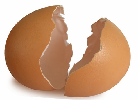 Qui n'a pas sa journée, c'est un peu la question que l'on peut aujourd'hui se poser ! L'œuf a été célébré le 10 octobre à travers le monde. Un produit de notre quotidien dont on ignore encore beaucoup.
