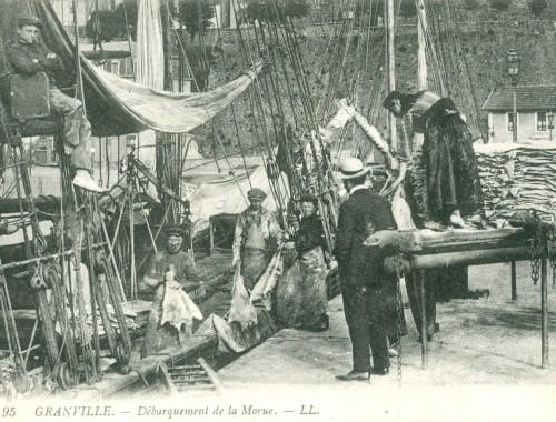 C'est l'histoire de plusieurs générations de pêcheur bretons, normands, portugais qui traversait l'Atlantique pour pêcher la morue! Des milliers d'hommes qui quittaient leur famille pour 6 mois ne sachant pas s'ils allaient tous revenir.