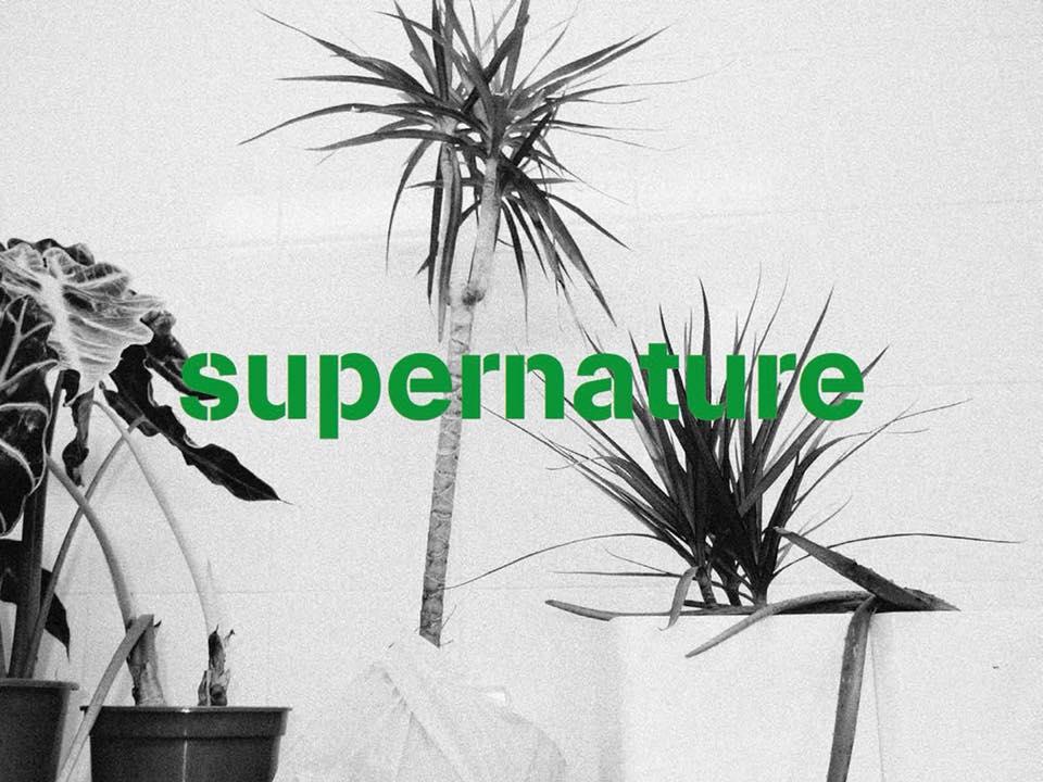 Lorsqu'ils ont créé Supernature, Christophe et Clémentine Colombet,  ont immédiatement prôné une alimentation répondant aux besoins fondamentaux du corps...